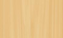 【内観】クリア-樹脂窓