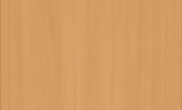 【内観】ナチュラル-樹脂窓